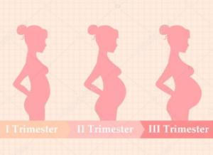 enceinte2